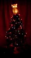 Christmas_2006_012